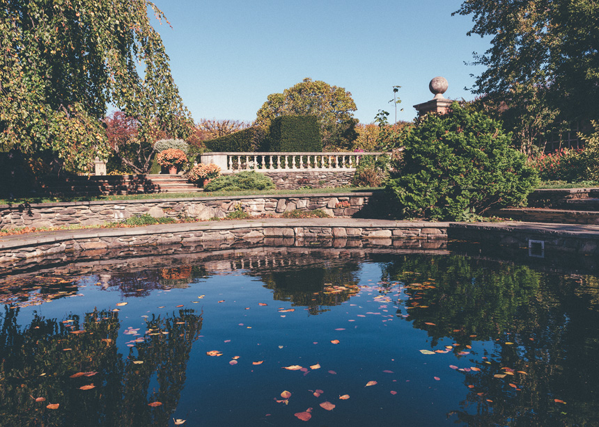 Chicago Botanic Garden in Fall 2015 - Photograph by Michael Courier